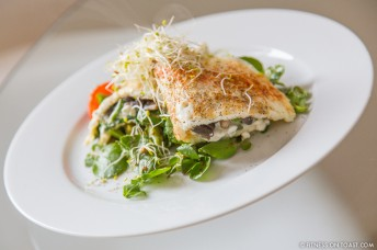 EGG WHITE OMELETTE WITH SPINACH AND MUSHROOM  http://fitnessontoast.com/2013/05/19/omelette/