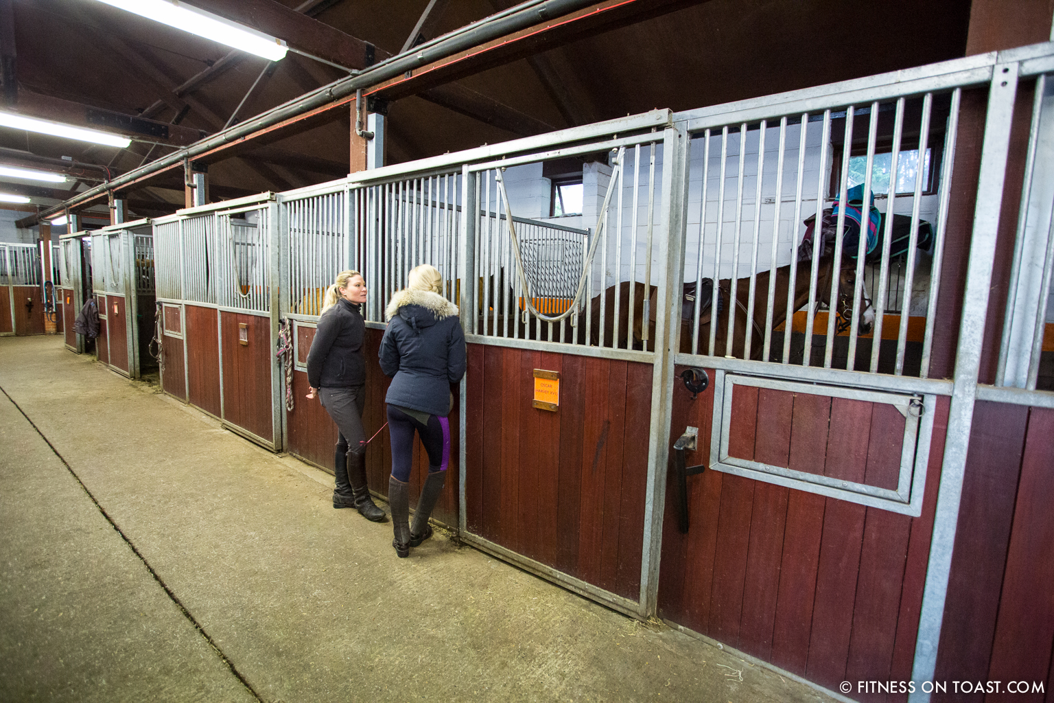 The benefits of horse riding fitness on toast