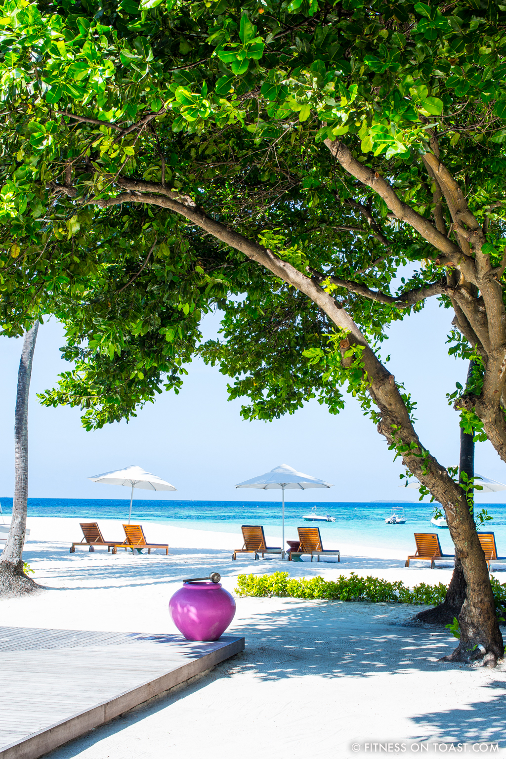 Fitness On Toast Faya Blog Girl Healthy Workout Exercise Training Health Travel Luxury W Maldives Starwood Vacation Active Escape Ideas Review-23