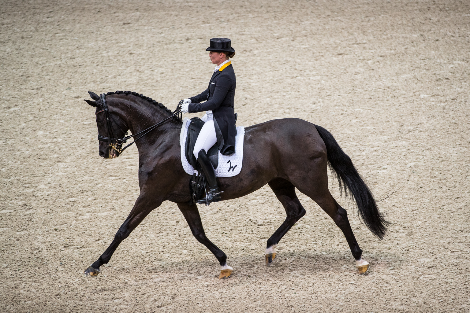 Fitness On Toast - FEI Dressage World Cup Finals Paris April 2018 France-13